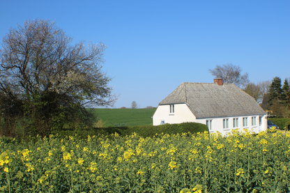 Ferienhaus 10676