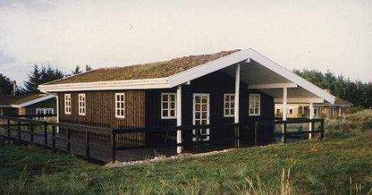 Ferienhaus 488